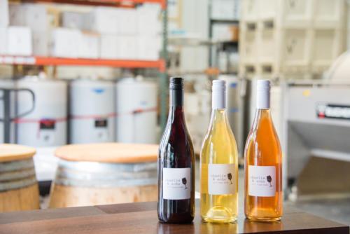 Bottles in Winery